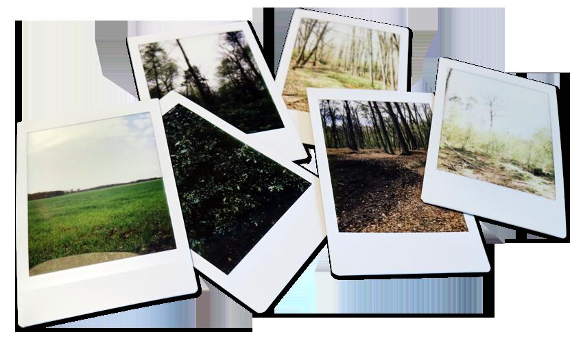 foto-gevoelswandeling | Oldenzaal | Twente | foto's | Wandelen | verbinden | verleden