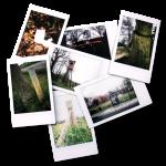 foto-gevoelswandeling   Oldenzaal   Twente   foto's   Wandelen   verbinden   verleden